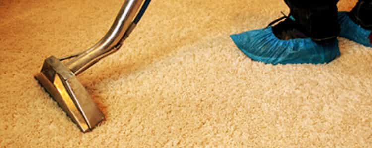 Best End of Lease Carpet Cleaning Kew