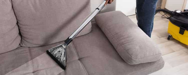 Best Upholstery Cleaning Kew